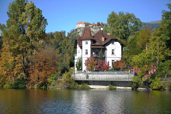 Vila Istra