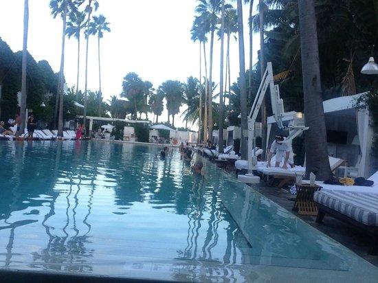 Delano South Beach Hotel: Cuidado com os Mijitos...