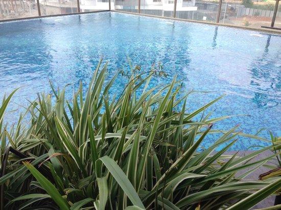 Noorya Hometel: The blue pool !!