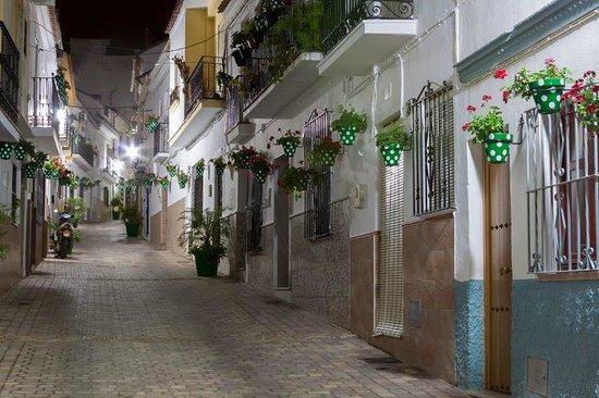 Centro histórico de Estepona: Calle Chorro - green spotty pots