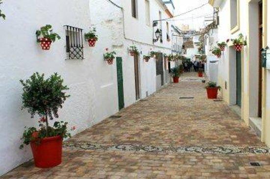 Centro histórico de Estepona: Calle Troyano spotted pots