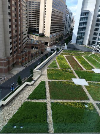 Residence Inn Arlington Capital View : View of parking roof landscaping from room window