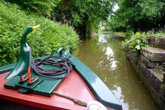 Wandering Duck Canal Boat Tours: Mal Lard - the boats figure head