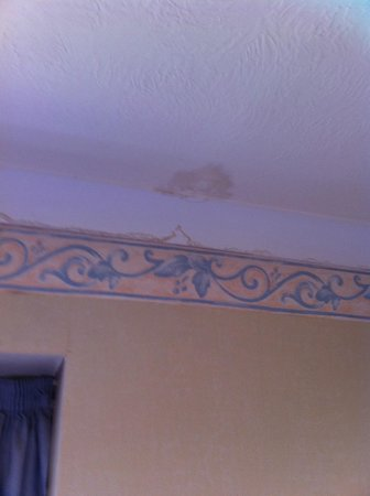 Carrington House Hotel: Stained ceiling