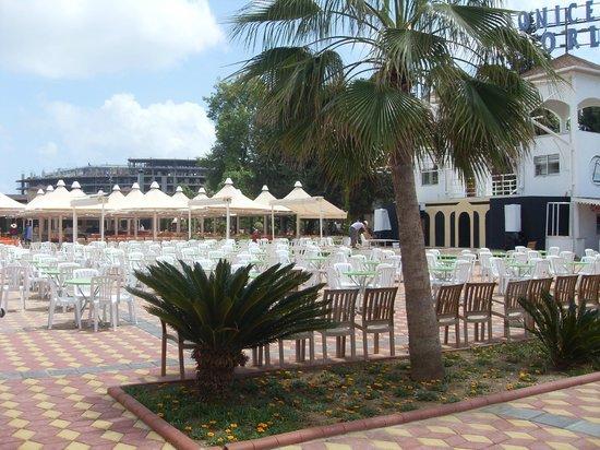 Lonicera World Club & Beach: Тут проходит анимация. Стройки не видно и не слышно!
