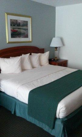 Ramada Hilton Head: Large, Comfy Bed