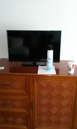 Ramada Hilton Head: Vizio Flat Screen