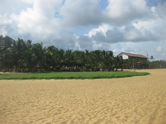 Jetwing Beach: View of Hotel from Beach