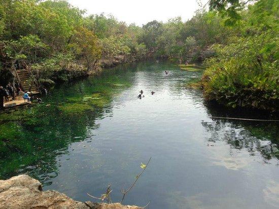 Salto picture of cenote jardin del eden yucatan for Jardin del eden