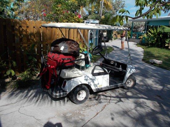 Staniel Cay Yacht Club : ready to go