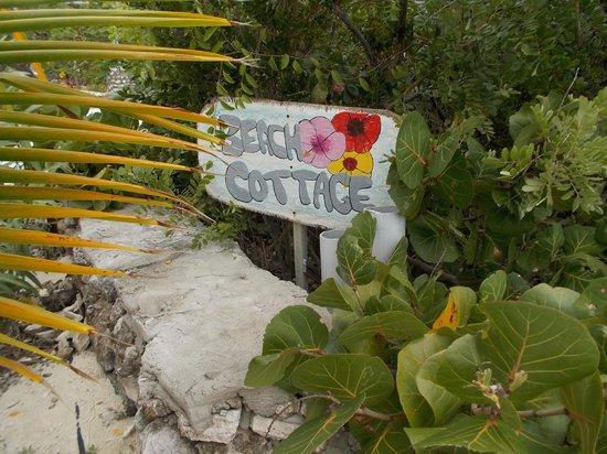 Staniel Cay Yacht Club: What it says