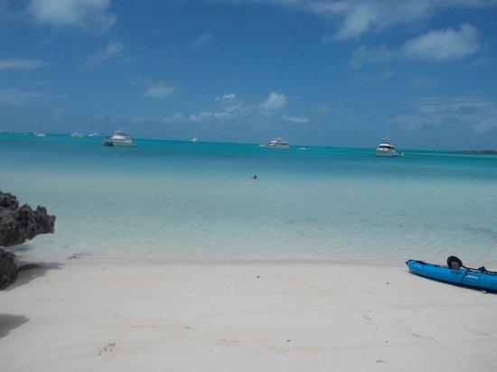 Staniel Cay Yacht Club: Yup, a beach