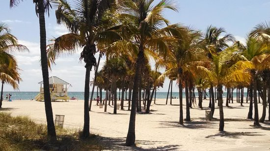 Cayo Vizcaíno, FL: paraíso