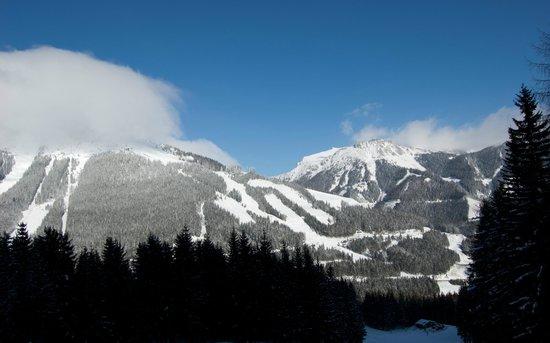 Skiarena Praebichl