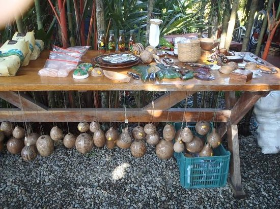 "Cafe Rico: Indigenous carved ""Boli Tree shells"""