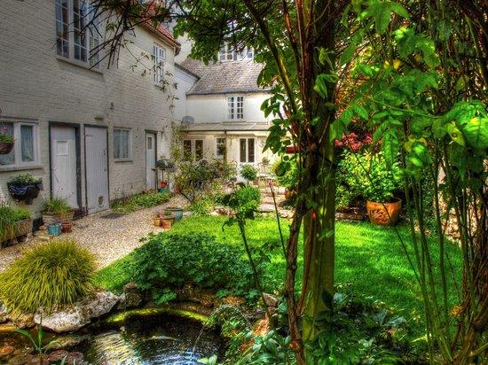 Ammonite Lodge Guest House: Garden