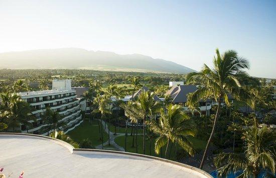Sheraton Maui Resort & Spa : Hotel and grounds