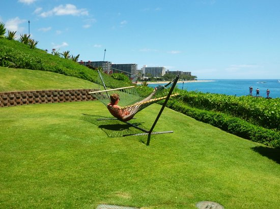 Sheraton Maui Resort & Spa : Hammock in the Building 6 yard