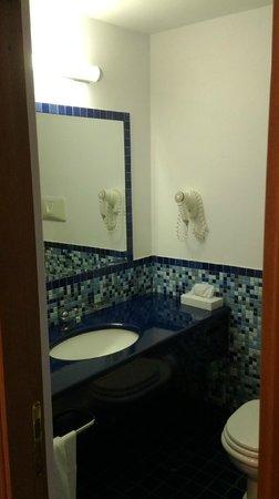 Royal Continental Hotel: Room 443 bathroom
