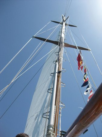 Vieques Classic Charter - Tours: Flags flying