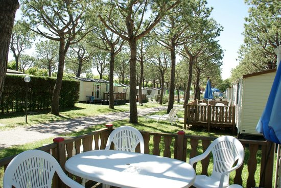Del Garda Village and Camping : view from mobile