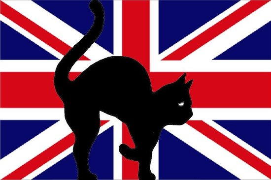 Le Secret du Chat : Au Secret du chat nous parlons aussi l'anglais