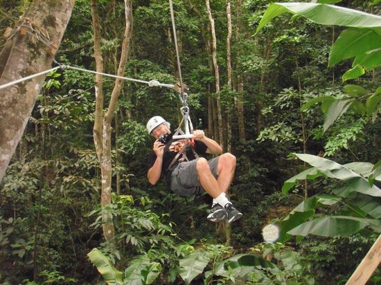 Rainforest Adventures Rainforest Excursion Tour: Zipline