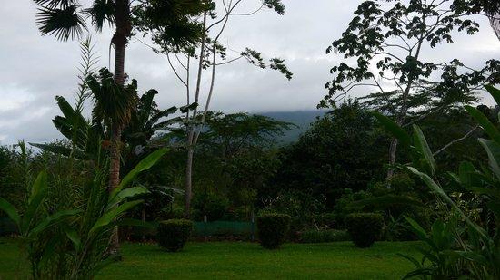 Volcano Lodge & Springs: vistas desde la habitación