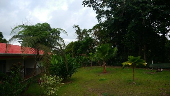 Volcano Lodge & Springs: vistas