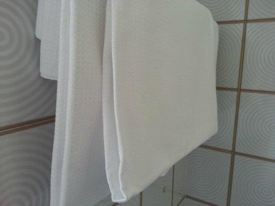 Hotel Europa Signa: Des serviettes de toilette moelleuses comme de la toile emeri