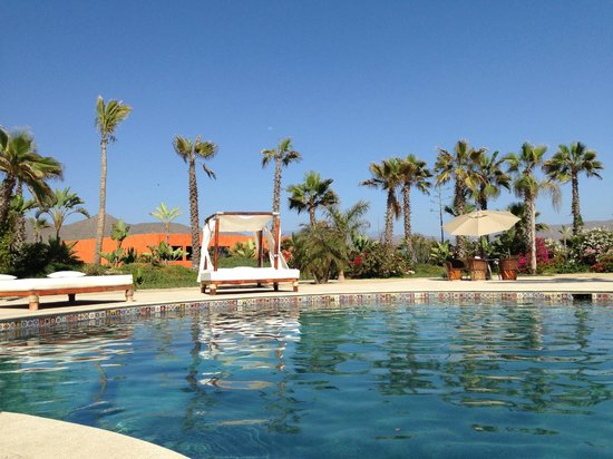 Cerritos Surf Colony : Palm Trees. Beds. Water. Sun.