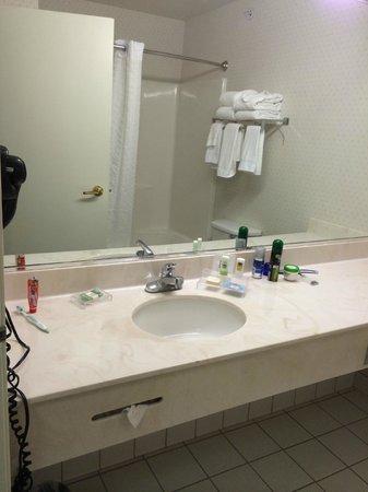 Country Inn & Suites by Radisson, Big Flats (Elmira), NY: bath