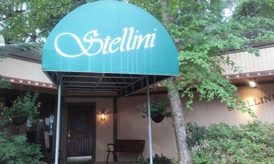 Stellini Italian Restaurant : Great Food!