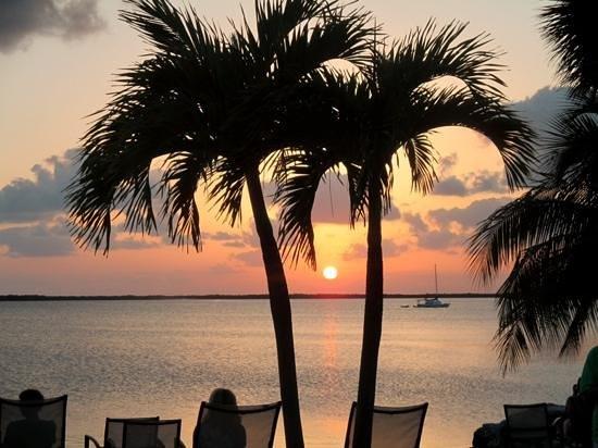 Hampton Inn Key Largo: Add a caption