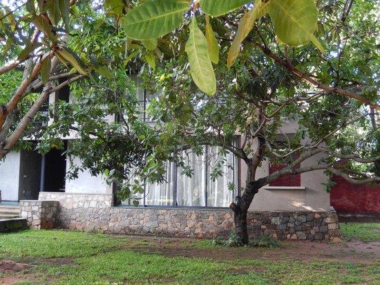 Thilanka Resort and Spa : chambre