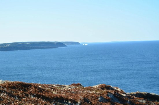 East Coast Trail: Cobblers Trail