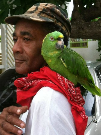 One Love Bus Bar Crawl : Parrot