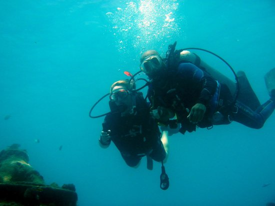 The Dive Shop Ltd.: Diving in Carlisle Bay