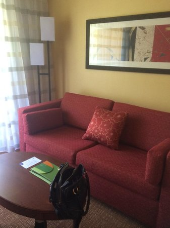 Courtyard by Marriott Tarrytown Westchester County : sofa bed
