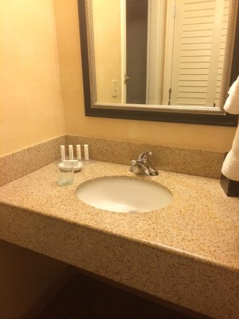 Courtyard by Marriott Tarrytown Westchester County : vanity