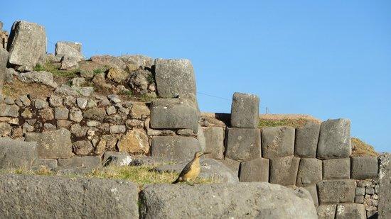 Estatua de Cristo: Sacsayhuaman