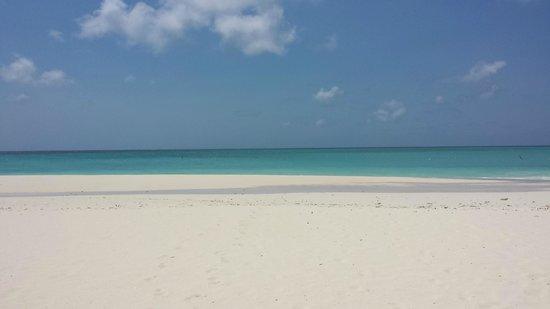 Manchebo Beach Resort & Spa: Eagle Beach