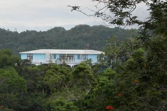 Tamarind Great House: First view of Tamarind from the road up