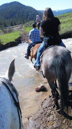 Jake's Horses : Amazing Creek Crossing!