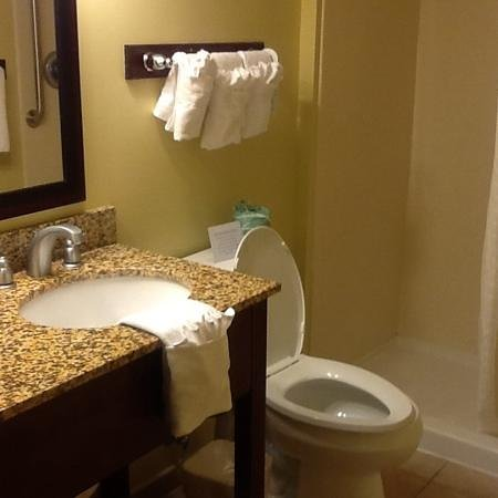Quality Inn Flamingo: Bathroom