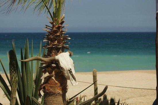 Worldmark Coral Baja: View in front of Mama Mias restaurant