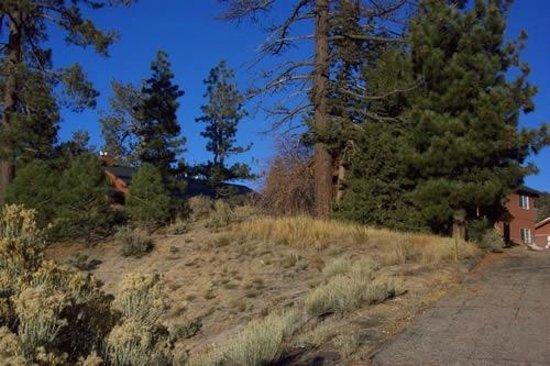 Worldmark at Big Bear: Grounds