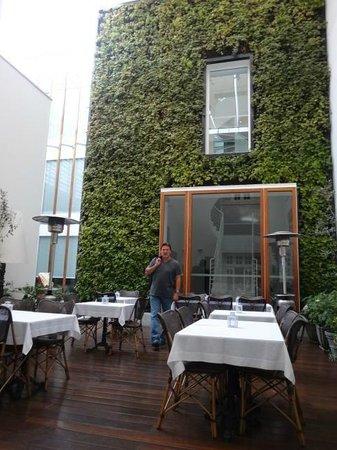 Hotel B: Courtyard / Patio