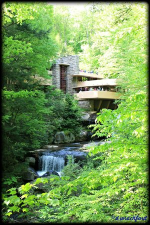 Fallingwater: View of the house from the overlook