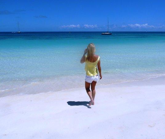 Blue Waters Antigua: Beach